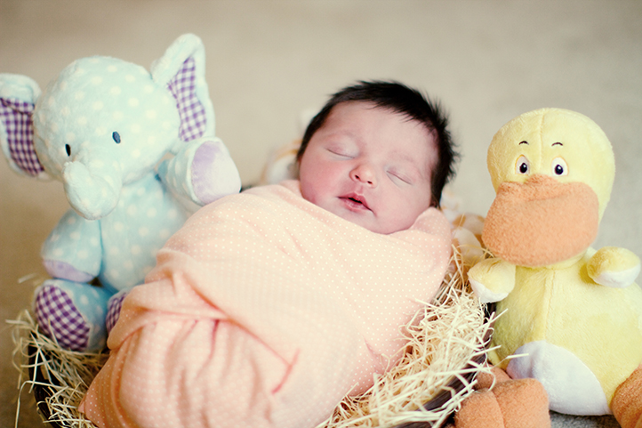 Baby in peach blanket lays in basket between duck and elephant stuffed animals.